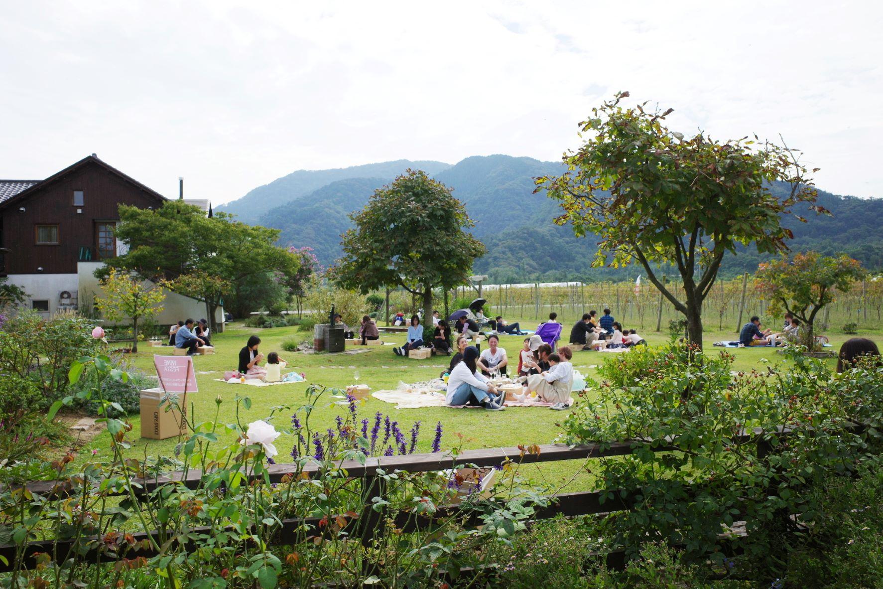 昨年のワインフェスタ、芝生の庭